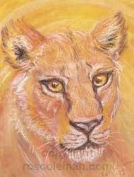 Sophias-Lioness-Spirit-Guide-250h